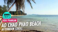 Ao Chao Phao Beach - Koh Phangan, Thailand - THAITRIPZ