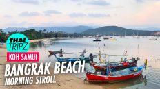 Bangrak Beach, Koh Samui, Thailand - THAITRIPZ