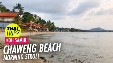 Chaweng Beach, Morning stroll, Koh Samui, Thailand - THAITRIPZ
