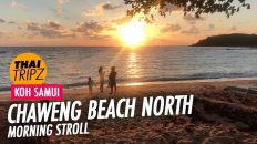 Chaweng Beach North End, Morning, Koh Samui, Thailand - THAITRIPZ