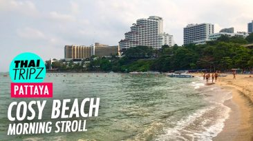 Cosy beach - Pattaya, Thailand - THAITRIPZ