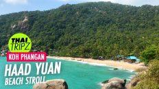 Haad Yuan Beach, Koh Phangan, Thailand - THAITRIPZ