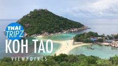 Koh Tao Viewpoints
