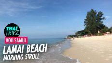 Lamai Beach, Morning, Koh Samui, Thailand