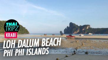 Loh Dalum Beach, Phi Phi Island