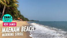 Maenam Beach, Koh Samui, Thailand - THAITRIPZ