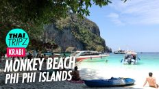 Monkey Beach, Phi Phi Island, Krabi, Thailand