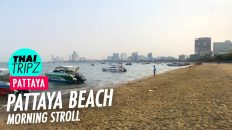 Pattaya Beach - Morning Stroll - Pattaya, Thailand - THAITRIPZ