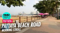 Pattaya Beach Road - Morning stroll - Pattaya, Thailand - THAITRIPZ