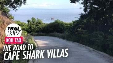 Road to Cape Shark Villas, Koh Tao, Thailand