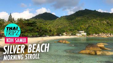 Silver Beach, Morning Stroll, Koh Samui, Thailand - THAITRIPZ