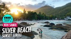 Silver Beach, Sunset stroll, Koh Samui, Thailand - THAITRIPZ