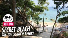 Taa Toh Seaview Resort, Beach, Koh Tao, Thailand